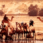 10 Facts about the Sahel Desert