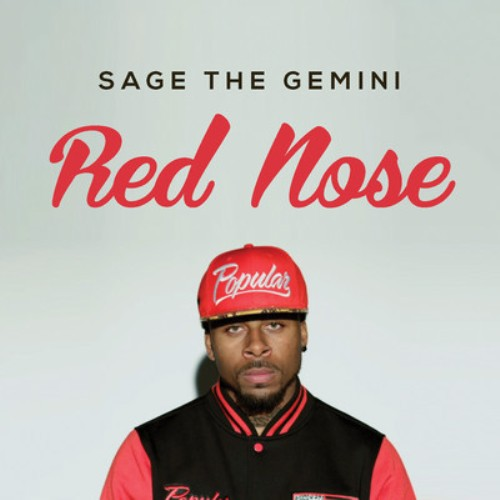 Sage the Gemini Red Nose